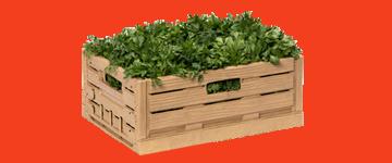 Caixas, cestos e contentores